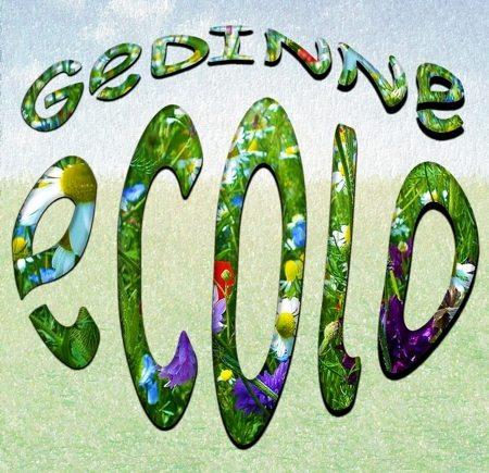 Gedinne_Ecolo_Gonfle_Fleur.jpg